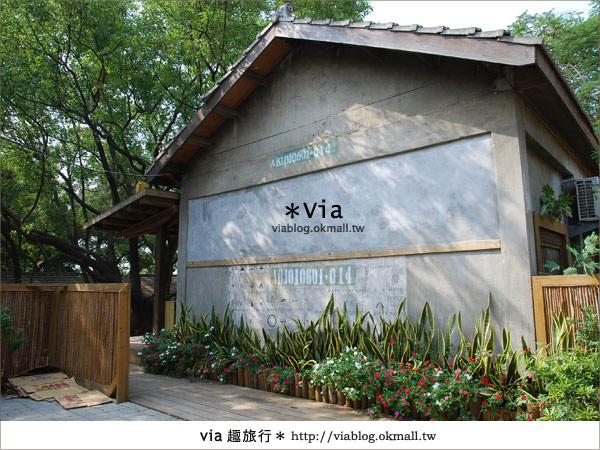 【彰化】彰化藝術高中~教室與森林結合的美麗校區5