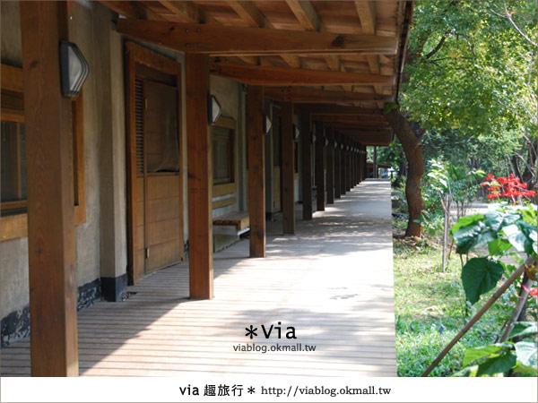 【彰化】彰化藝術高中~教室與森林結合的美麗校區15