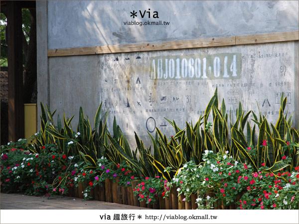 【彰化】彰化藝術高中~教室與森林結合的美麗校區6
