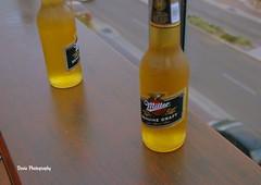 Dosie Imagery (dixoncamera.com) Tags: cactus cold beer drink beverage australia miller queensland jacks happyhour townsville skybar draught cactusjacks