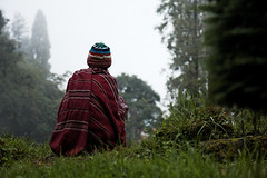 Contemplation (Olivier Th) Tags: voyage trip travel red summer vacation people orange cloud india mountain rain weather fog montagne canon season landscape rouge eos photo asia shot image indian hill colonial reporter picture culture pluie rainy monsoon british indians asie himalaya capture t nuage temps paysage hindu darjeeling indien brouillard personne thao colony colline inde reportage contemplation saison mousson contemplatif indiens colonie britannique regarder indienne  republicofindia moonson journalisme coloniale darjiling indiennes photoreportage bengaleoccidental  bhrat ganarjya