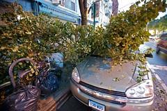 destruction! (tud5000) Tags: park new york nyc newyorkcity newyork storm rain brooklyn destruction parkslope gothamist tornado slope