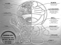 Doraemon: anatomia