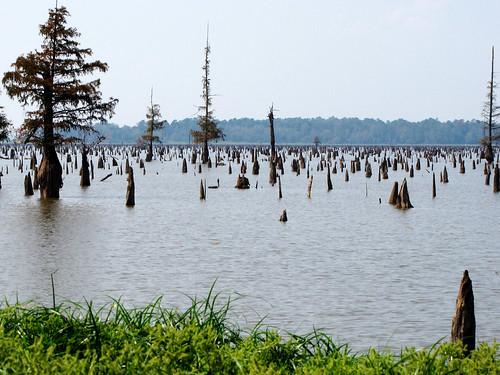 Millwood Lake-3