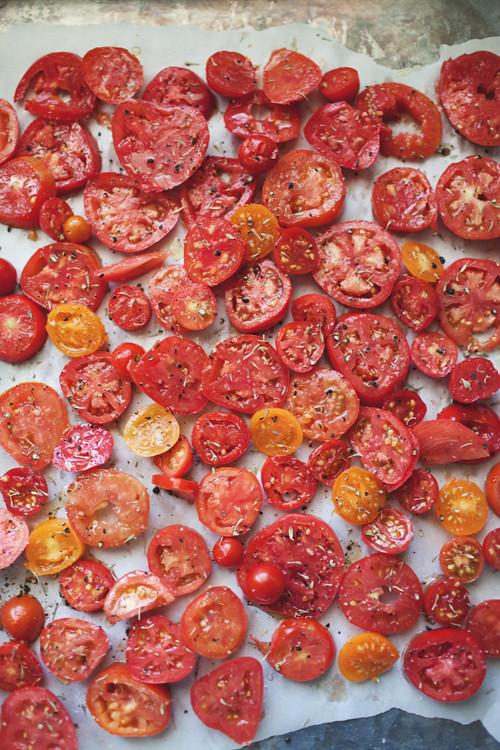 tomatoes3 copy