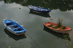 Barcas (TerePedro) Tags: espaa rio boat spain barca asturias pajaro 1001nights gaviota ria sella ribadesella aboutiberia 1001nightsmagiccity
