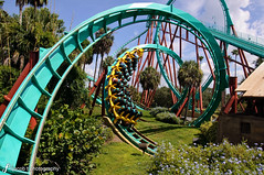 Busch Gardens - Roller Coaster (Jacob Tompkins | Worked Photography) Tags: park gardens tampa amusement nikon florida teal roller fl coaster busch kumba d90