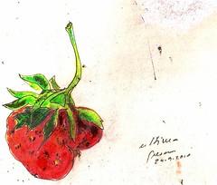 la última fresa del año