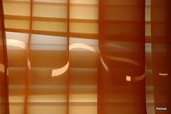 Yellow Ribbon of Light (Rebeak) Tags: sunlight alaska blinds curtains mywinners creattività rebeak