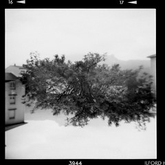 . (El H1N5) Tags: 120 film grenoble holga doubleexposure hp5 ilford 400iso halfcap