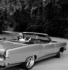 """1965 Pontiac Parisienne Photoshoot • <a style=""""font-size:0.8em;"""" href=""""http://www.flickr.com/photos/85572005@N00/5036354773/"""" target=""""_blank"""">View on Flickr</a>"""