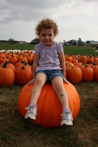 IWantThisPumpkin