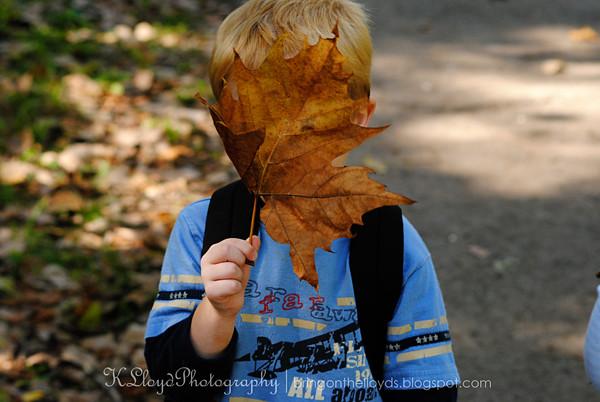 Breck-with-leaf---wm