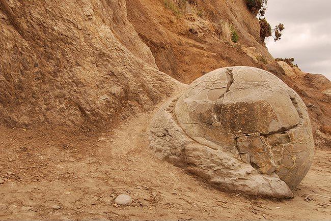 صخور نيوزلندا العجيبة