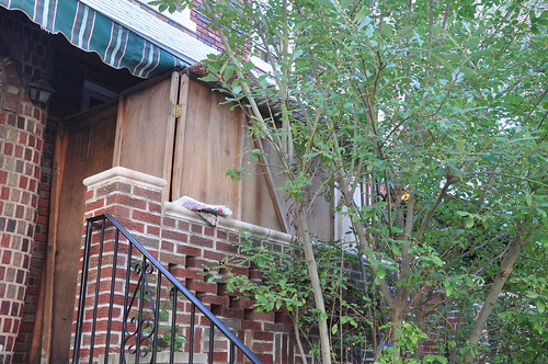 Sukkah in Brooklyn