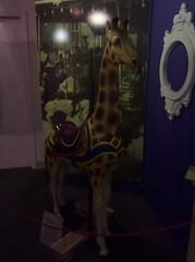 The Giraffe Looks Uncertain