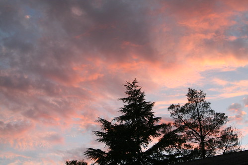 Evening Sky for Our Michaelmas Dinner Outdoors
