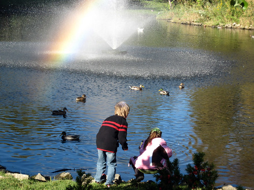 Kids Feeding the Ducks, Old Mill Pond