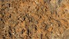 gossanous soil cover (bhaskarroo) Tags: fiji cover udu gossan vanualevu nukudamu