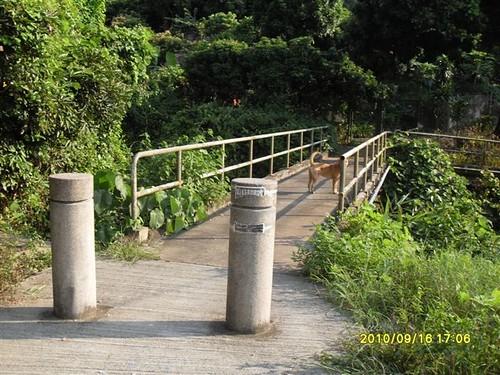 甲龍行人橋