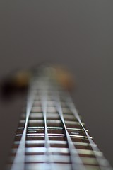 ____ (Marlonnie) Tags: music blur play bass bokeh band fender sound string bassist strings myusic