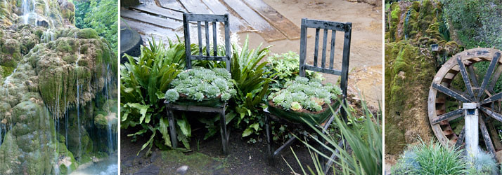 jardin pétrifiant