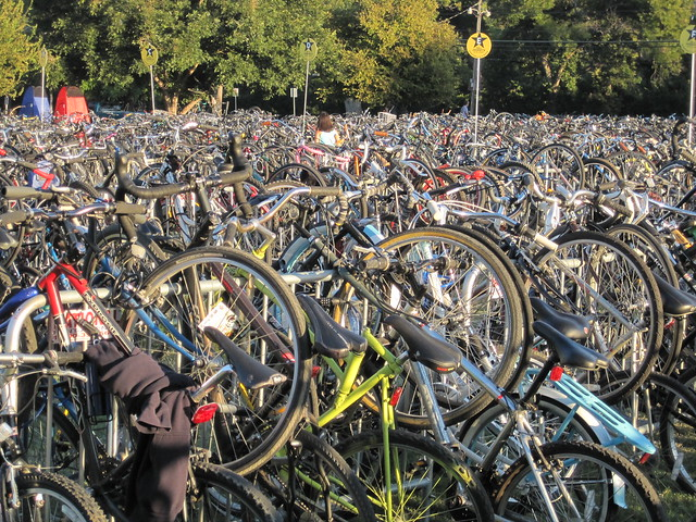 Forest of bicycles