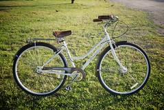 Schwinn Cream (andy.kang) Tags: bike cream schwinn cruiser
