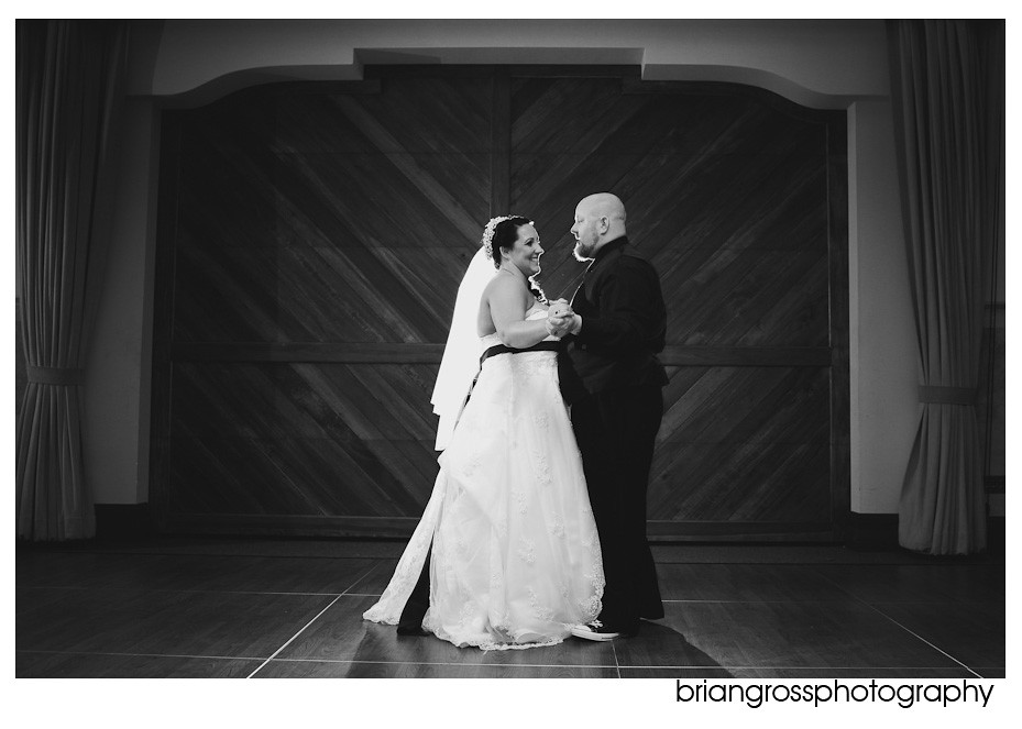 Tracy_Wedding_ShannonCommunityCenter_2010_BrianGrossPhotography167