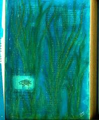 Aqua Fish