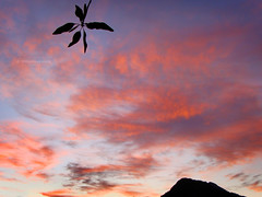 Minimalist landscape (VillaRhapsody) Tags: morning sunset red sky mountain tree nature clouds sunrise turkey dawn early fethiye babadag kayaky challengeyouwinner