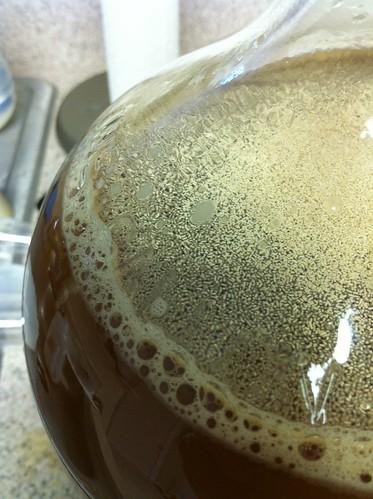 Start your fermenting!