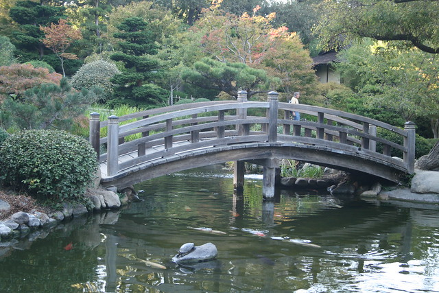 serene little bridge