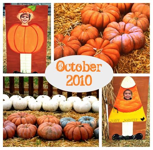 Pumpkin Patch Collage