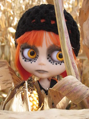 Cinder in my sister's corn field