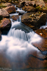 Jordan Creek (Ed Heaton Photography) Tags: leaves rocks maine waterfalls workshop acadia creativecomposition jordoncreek