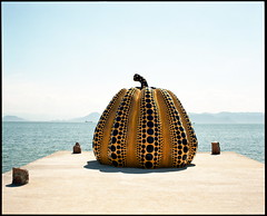 kabocha (troutfactory) Tags: sculpture art film yellow japan mediumformat wonderful giant pumpkin artwork magic rangefinder  analogue 6x7 iconic naoshima yayoikusama kabocha     fujifilmgf670 fujiprofessional100 voigtlanderbessaiii