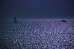 On their way home (Baba Sakae) Tags: sea japan yacht calm fishingboat glassy catoptriclight