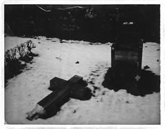 Cross down (bildministeriet) Tags: winter snow broken cemetery polaroid experiments sweden dar uppsala expired underexposed packfilm peelapart panpola polaroidlandkamera180