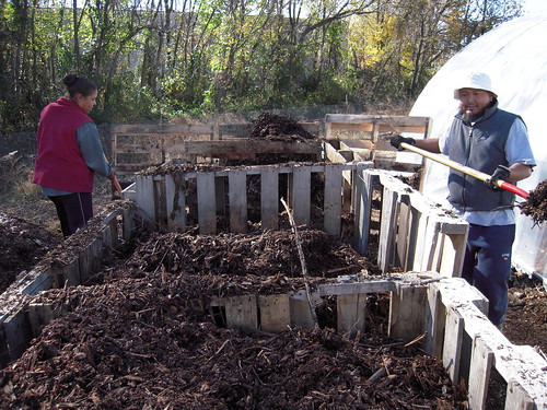 Turning the Compost