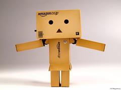 (ed555009) Tags: amazon   danboard