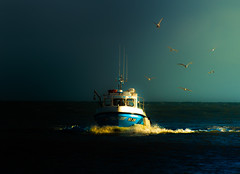 Homeward Bound (Zimmergimmer) Tags: ocean sea seagulls boat waves bow hss slidersunday