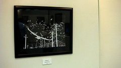 """The Edge of The World"" – The Senior Exhibition of Richard Barbre 24 (HSU Art Dept) Tags: show senior university state library richard henderson hsu huie barbre"