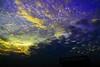 আজি এ প্রভাতে রবির কর [ Promise the DAWN ] (HamimCHOWDHURY  [Read my profile before you fol) Tags: life light shadow red portrait blackandwhite sun white black flower green nature canon eos twilight colorful faces blu sony surreal excellent dhaka vaio rgb bangladesh dlsr 60d framebangladesh 505036 127016102010