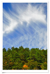 4578       .  .    - Wuling  Fram . autumn colors . Sunrise of Mountains . Alpines Scenes . Landscape of Taiwan (deepblue68) Tags: world life county autumn trees light shadow red sky sunlight mountain color colour nature colors leaves sign clouds forest season landscape outdoors photography photo leaf maple flora scenery asia natural image earth farm seasonal scenic taiwan environmental explore momiji vision taichung blaze  formosa          alpines  wuling         lishan         apathwayhomecom deepblue68