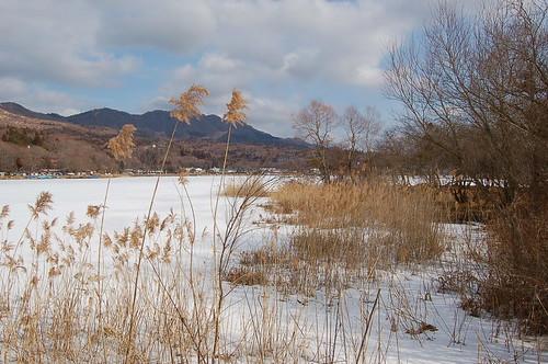 ★2月の山中湖から・・・