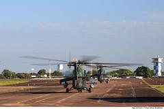 Helicóptero AH-2 taxiando para a decolagem. (Força Aérea Brasileira - Página Oficial) Tags: 2017 ah2sabre brazilianairforce fab forcaaereabrasileira forçaaéreabrasileira fotoandrefeitosa fotojohnsonbarros helicoptero sabre