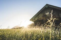 Summer Vibes at Geroldsee (xxremixx) Tags: sunset sundown sonnenuntergang goldenhour golden stunde goldenestunde see lake bayern bavaria deutschland germany karwendel alpen alps alpes berge berg mountains mountain landschaft landscape sony a7 a7ii fe1635 f4 geroldsee gerold krün garmisch partenkirchen karten