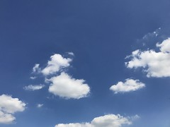 July 05, 2017 at 03:03PM (Mr T UK) Tags: ios photos cloud clouds sky outdoor blue white grey dark light sun sunshine cloudy clear overcast iphoneography mobile 365days 365day project365 cloud365