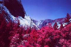 Yosemite National Park (cris_that1) Tags: yosemite national park infrared aerochrome infrachrome fpp film photography project 35mm minolta srt101